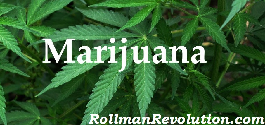the medical marijuana revolution Medical marijuana, inc not only developed the world's 1st legal supply of cbd - it inspired a revolution that will change history we envision a future where cannabis and hemp have become a cornerstone of society a future where hemp is a staple in diets, and cannabinoids are the source of.